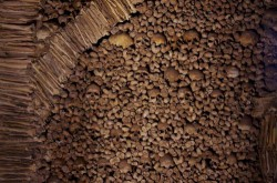 Évora - Chapel of bones by Ken & Nyetta @Wikimedia.org