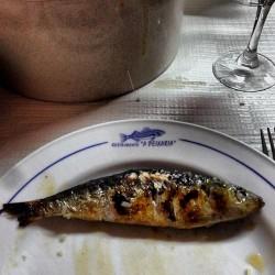 Aveiro - A Peixaria Restaurant