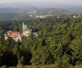 Coimbra - Buçaco by Edescas2 @Wikimedia.org