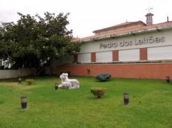Coimbra - Mealhada - Pedro dos Leitoes