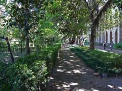 Lisbon - Botanical Garden