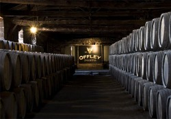 Port Wine Cellars Tour - Offley