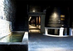 Port Wine Cellars Tour - Sandeman
