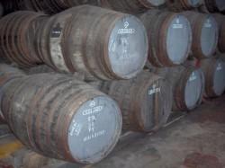 Porto - Douro Wine Harvest by Georges Jansoone @Wikimedia.org
