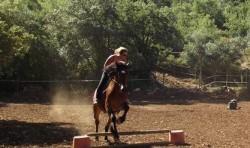 c-O-Vale-dos-Cavalos-e1405548830411
